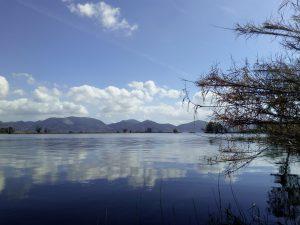 Lago di Massaciuccoli